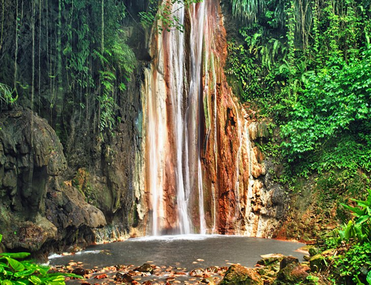 Diamond Botanical Gardens & Waterfall