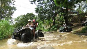 Atv Tours Packages