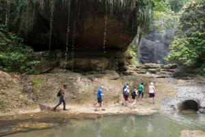 Rainforest Hike Adventure Tour